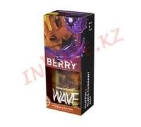Berry - жидкость Wave